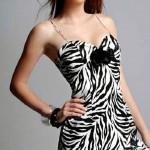 ip askılı zebra abiye